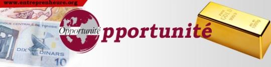 Opportunité_banner_entreprenheure_tunisia copy